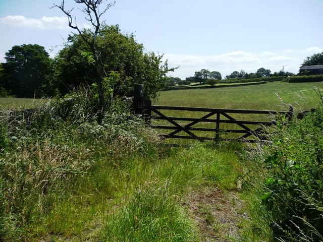 Field gate off Bark House Lane