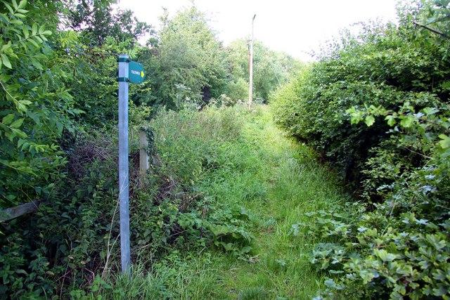 Footpath round Noke