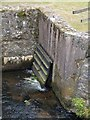 SX8178 : Outflow, Bovey Bridge by Derek Harper