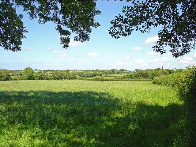 Field near Trewilym, Eglwyswrw