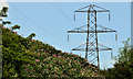 J3168 : Pylon and power lines near Mary Peters Track, Belfast (1) by Albert Bridge