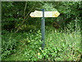 SO5058 : Signpost near Leominster station by Jeremy Bolwell