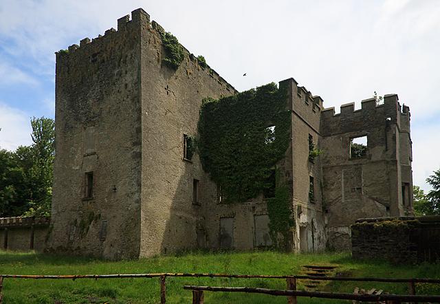 Castles of leinster donadea kildare mike searle cc by for Kildare castle