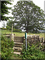 SE9784 : Damaged stone stile near Hutton Buscel church 2010 by John S Turner