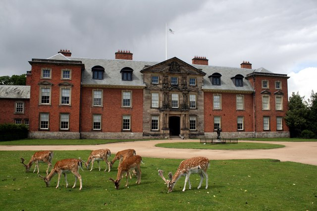 Dunham Massey Hall and fallow deer