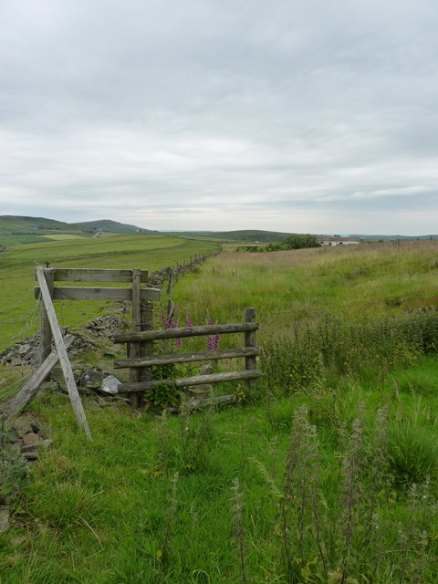 The footpath towards Daffodil Farm