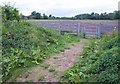 SP2665 : Footpath near Warwick Parkway by Derek Harper