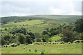 SX6673 : Dartmoor Forest: above the West Dart valley by Martin Bodman