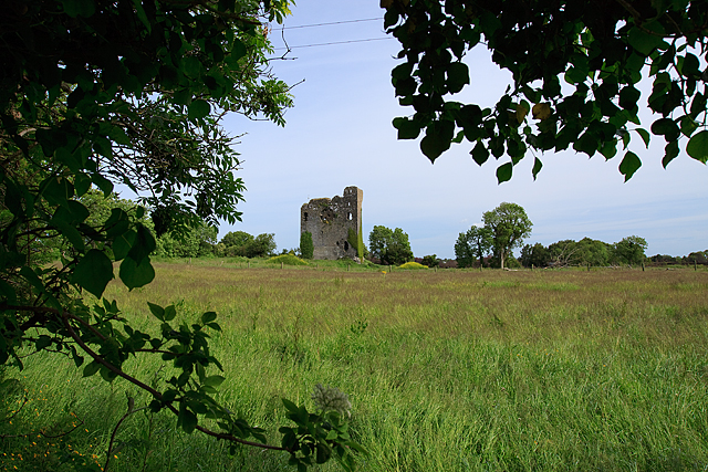 Castles of Munster: Drumnamahane, Tipperary