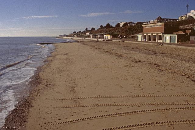 Dog Friendly Beaches Near Colchester