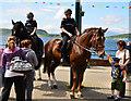 NM8530 : Police horses in Oban : Week 28