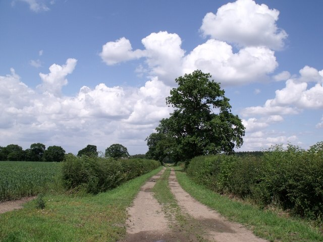 Bridleway to Eagle Barnsdale, near Morton