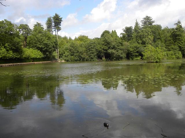 Silt Lake, Tilgate