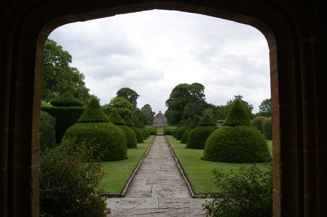 The Yew tree topiary in the Apostle Garden at Lytes Cary Manor