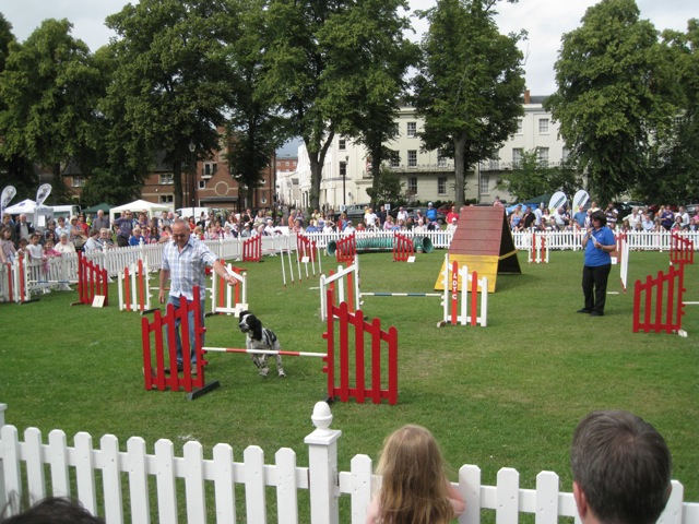 Doggie event, Pump Room Gardens