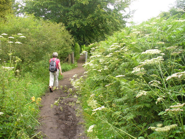 Greensand Way at Ivy Cottage