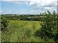 SK3937 : Bit of wasteland in farmland, Chaddesden, Derby by Peter Barr