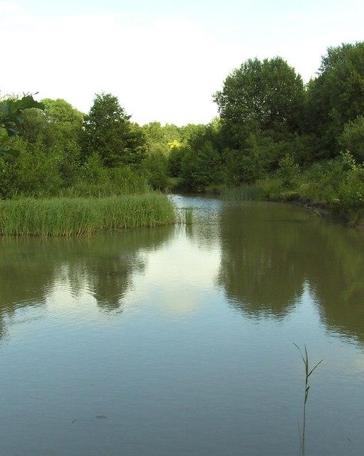 Gascoigne Wood Back Fishing Pond Derek Dye Cc By Sa 2 0