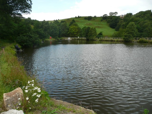 Millpond at Ramsden Wood, Walsden