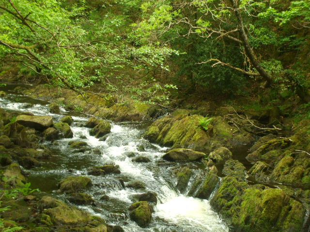Afon Clywedog