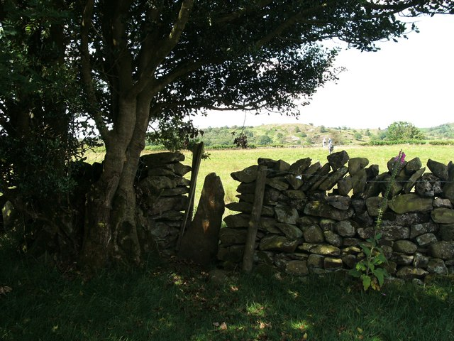 Stile in wall near Thompson Wood