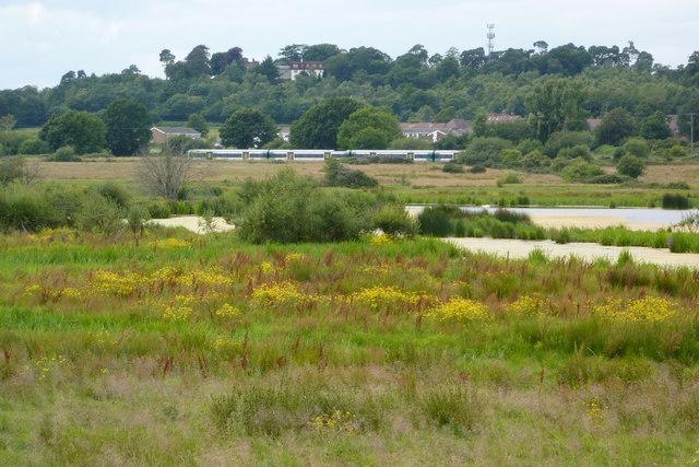 Waltham Brooks Nature Reserve