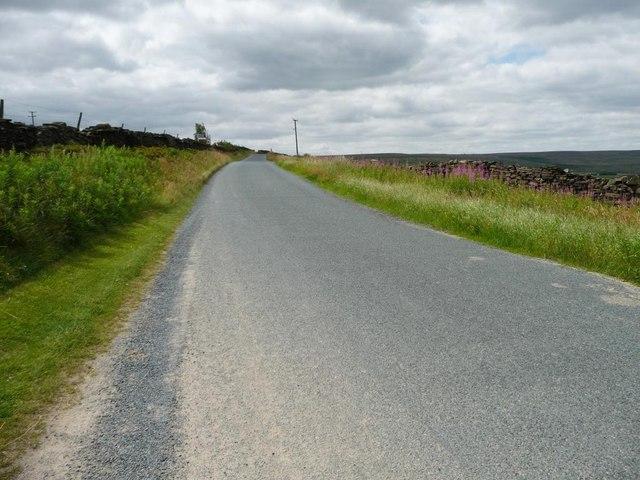 Black Moor Road at Bentley Hay
