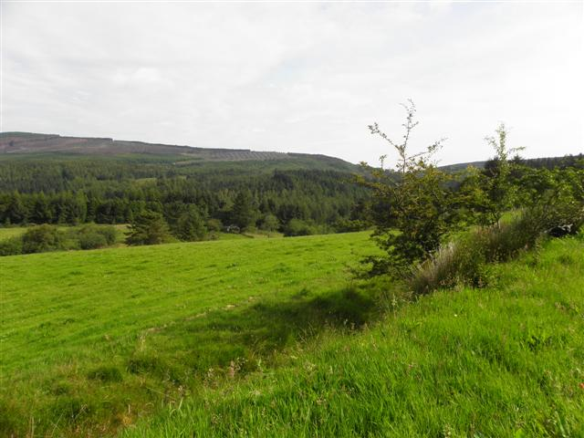 Cullion Townland