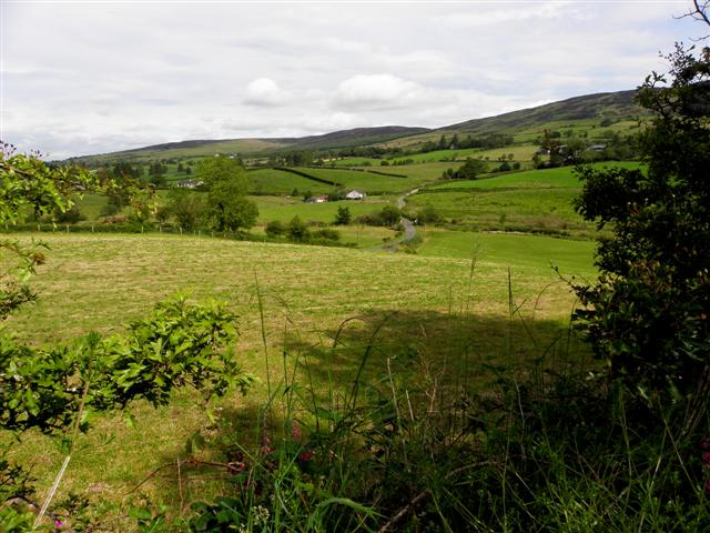 View from Cullion Wood