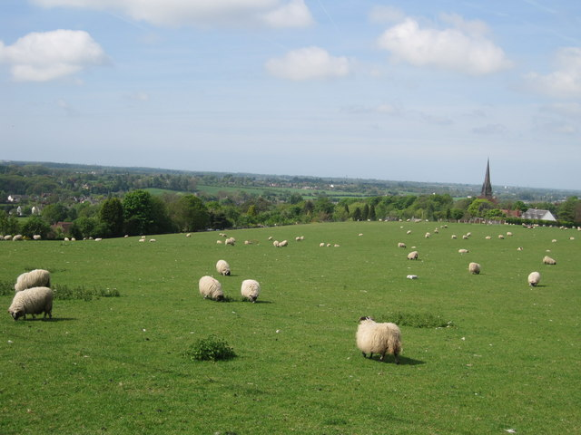 Looking West from Parbold Hill