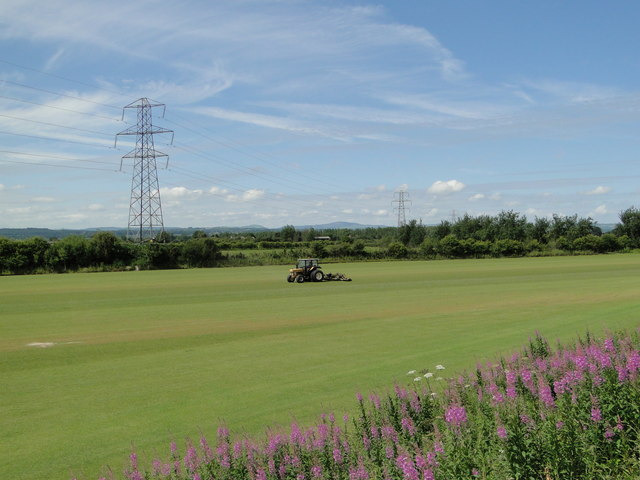 Cutting the sward on a turf farm
