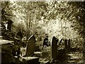 SK3485 : Graveyard scene by dave hudson
