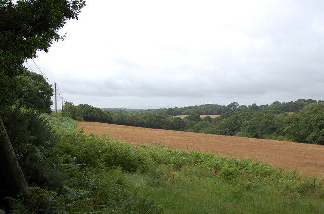 Fields off Flitterbrook Lane
