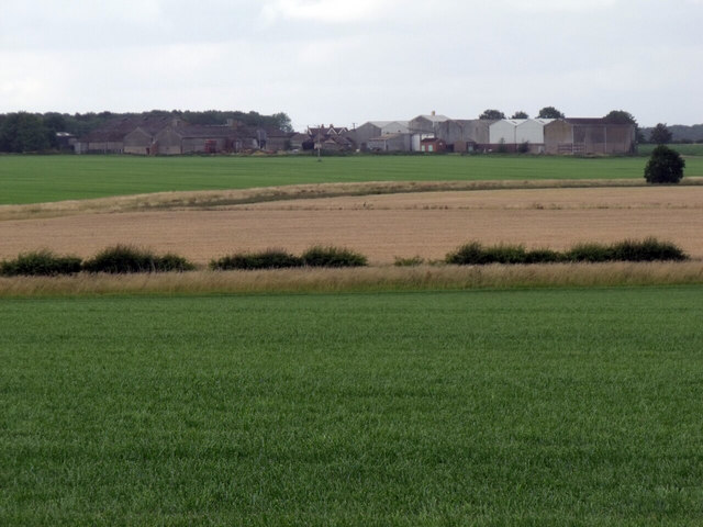 Fields towards Lodge Farm