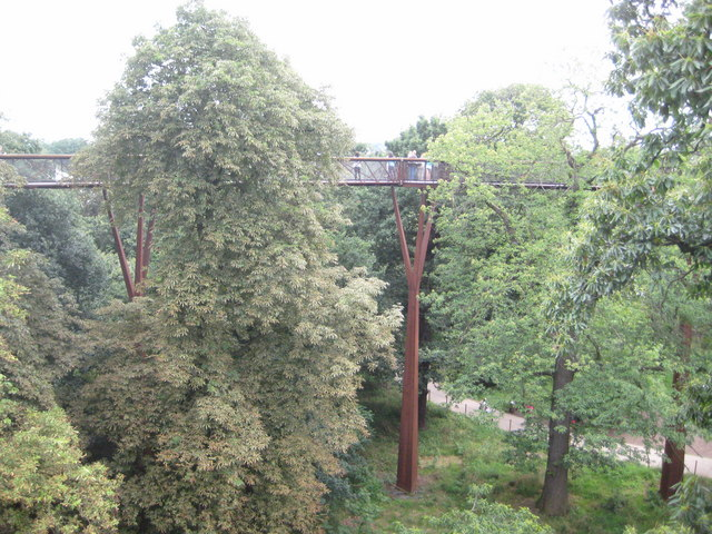 Kew: The Royal Botanic Gardens: The Rhizotron and Xstrata Treetop Walkway