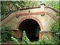 TF0760 : Bridge in Becks Wood : Week 29