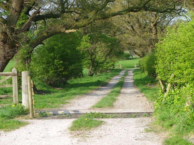 Drive to Bailton's Farm