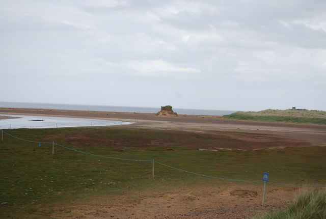 Tern Colony, Beadnell Bay