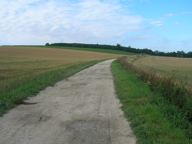 Track towards South Ferriby (footpath)
