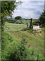 ST9286 : Gate and trough near Danielswell Farm by Derek Harper