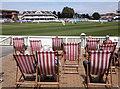 ST2224 : Watching the cricket, at Taunton : Week 30
