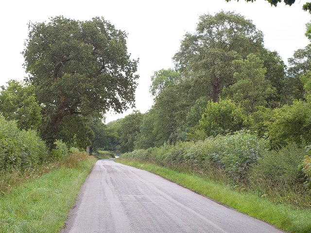 Road past Braydon Wood