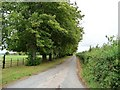 SP0433 : Lane to Lydes Farm by Christine Johnstone