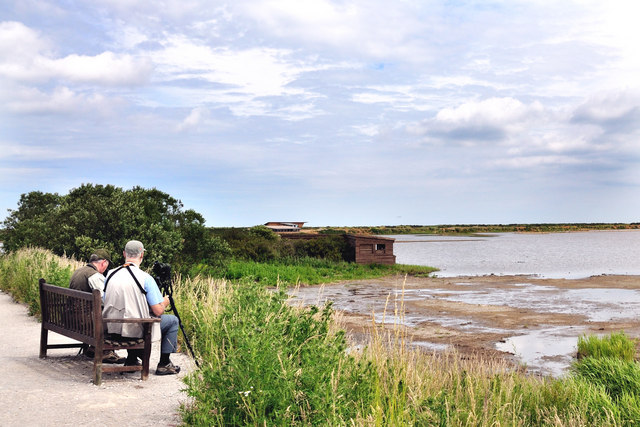 Birdwatchers at Titchwell fresh marsh
