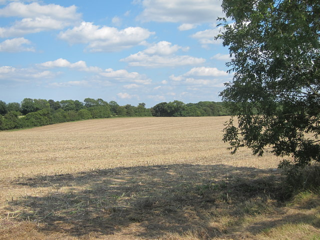 Fields by South Green Lane