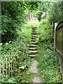 SE0025 : Steps on Hebden Royd Footpath 51, Mytholmroyd by Humphrey Bolton