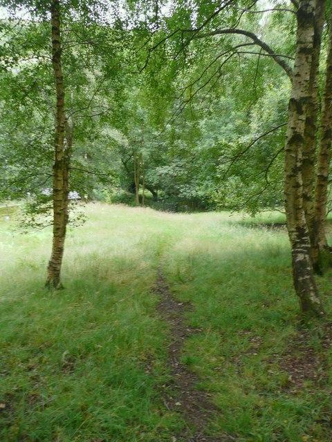 Hebden Royd Footpath 51, Mytholmroyd