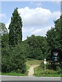 TQ4198 : Path near High Beach, Epping Forest by Malc McDonald