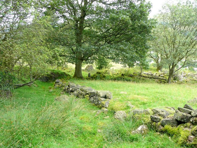 Ruins of Daisy Bank, Mytholmroyd