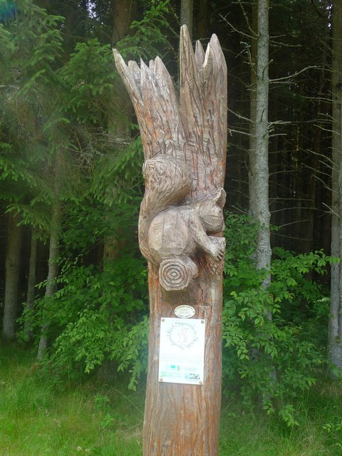 Chainsaw carving ronnie leask geograph britain and